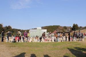 すいらん2011/12/26