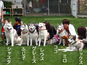 水戸スクエア2011/05/22