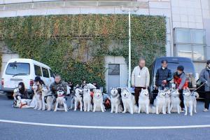 東京インター2011