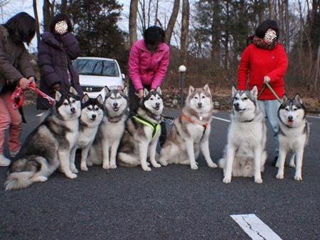 鬼怒川旅籠屋20120211
